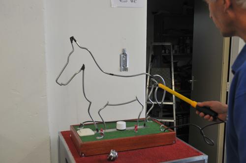 spiraal-paard-foto